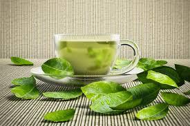 Green Tea Extract for Jiu-Jutsu