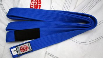 Techniques You Need to Know For Your Blue Belt